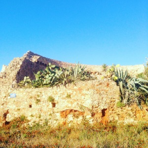 Read more on Crete and things to do in Greece on my Travel Blog www.littlebrookroad.com #HeHoLetsGo LittleBrookRoad 1